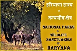 Haryana national Parks-sukrajclasses.com